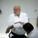 Aalborg Aikido seminar 2014 - 10